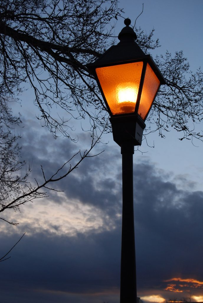 The Light Post with a Tree at Dusk
